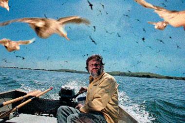 Zizek y los pájaros